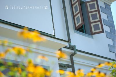 お花。.jpg