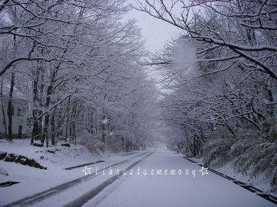 雪の道路.jpg